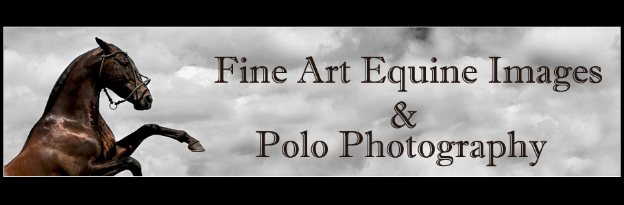 Alice Gipps - International Polo Photographer