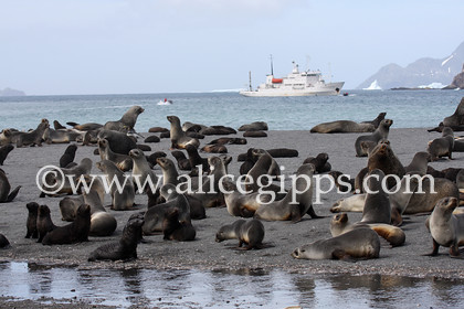 IMG 1125 