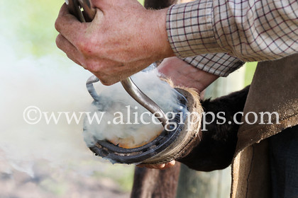 E56G4377 1 