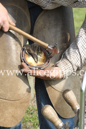 E56G4382 