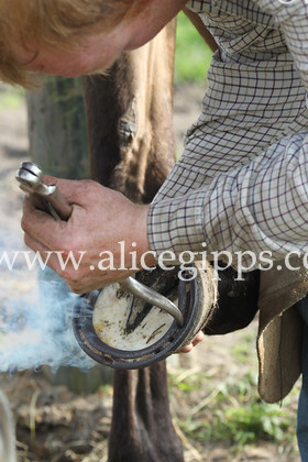 E56G4356 